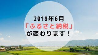 ふるさと納税 法改正 6月